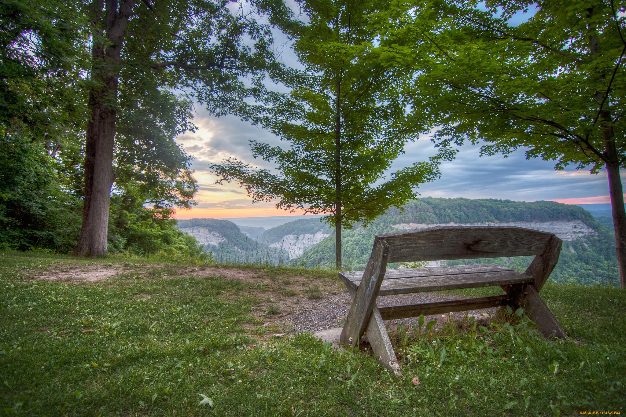 Лес картинки скамейка красивые